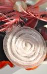 espiral-crin-rosa