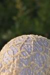 Detalle de sombrero primavera 2011