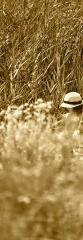 Sombrero de paja para el campo